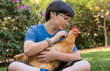 4_cKeller+Keller_kidsguidetokeepingchickens