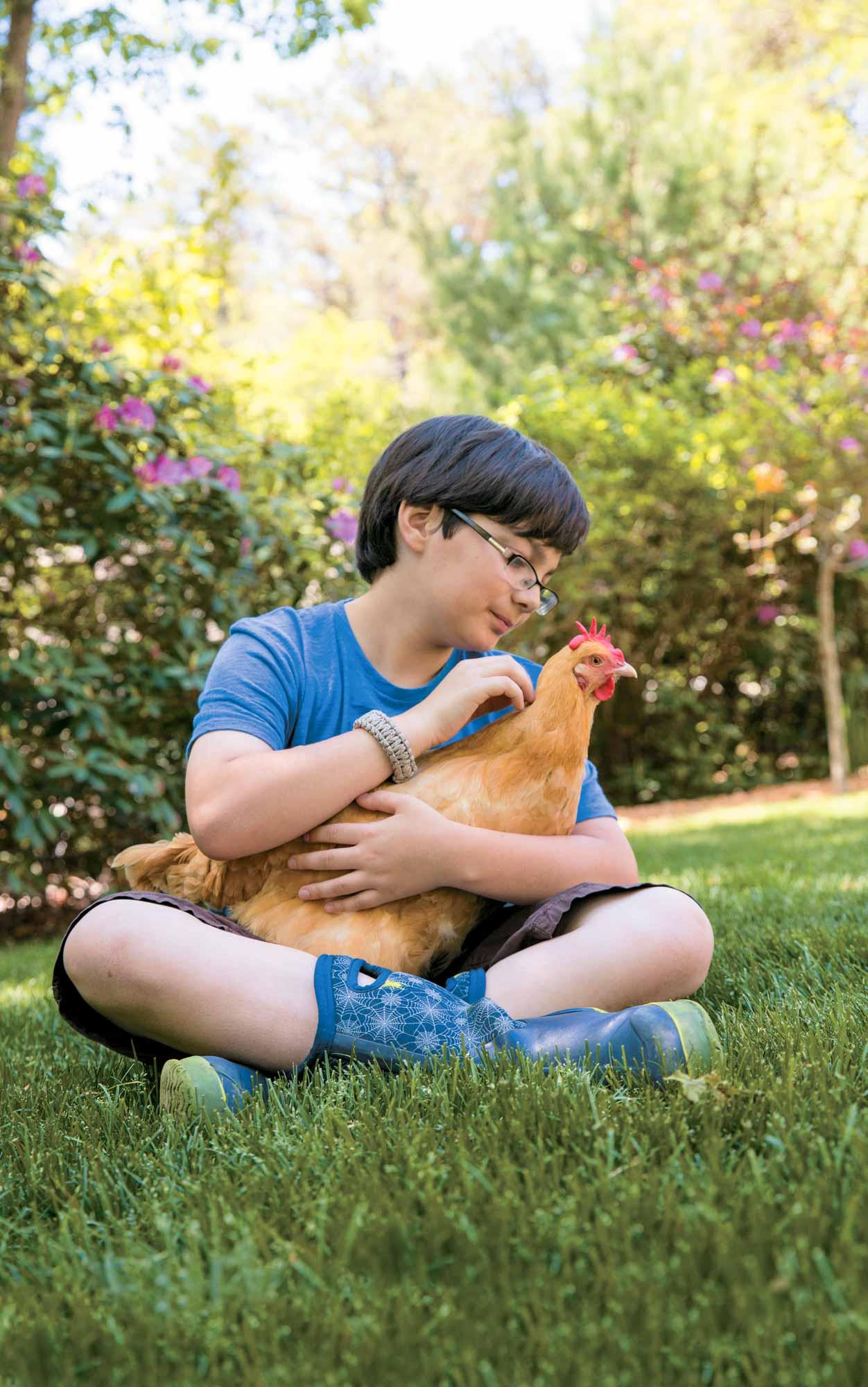 cKeller+Keller_kidsguidetokeepingchickens chickens kids