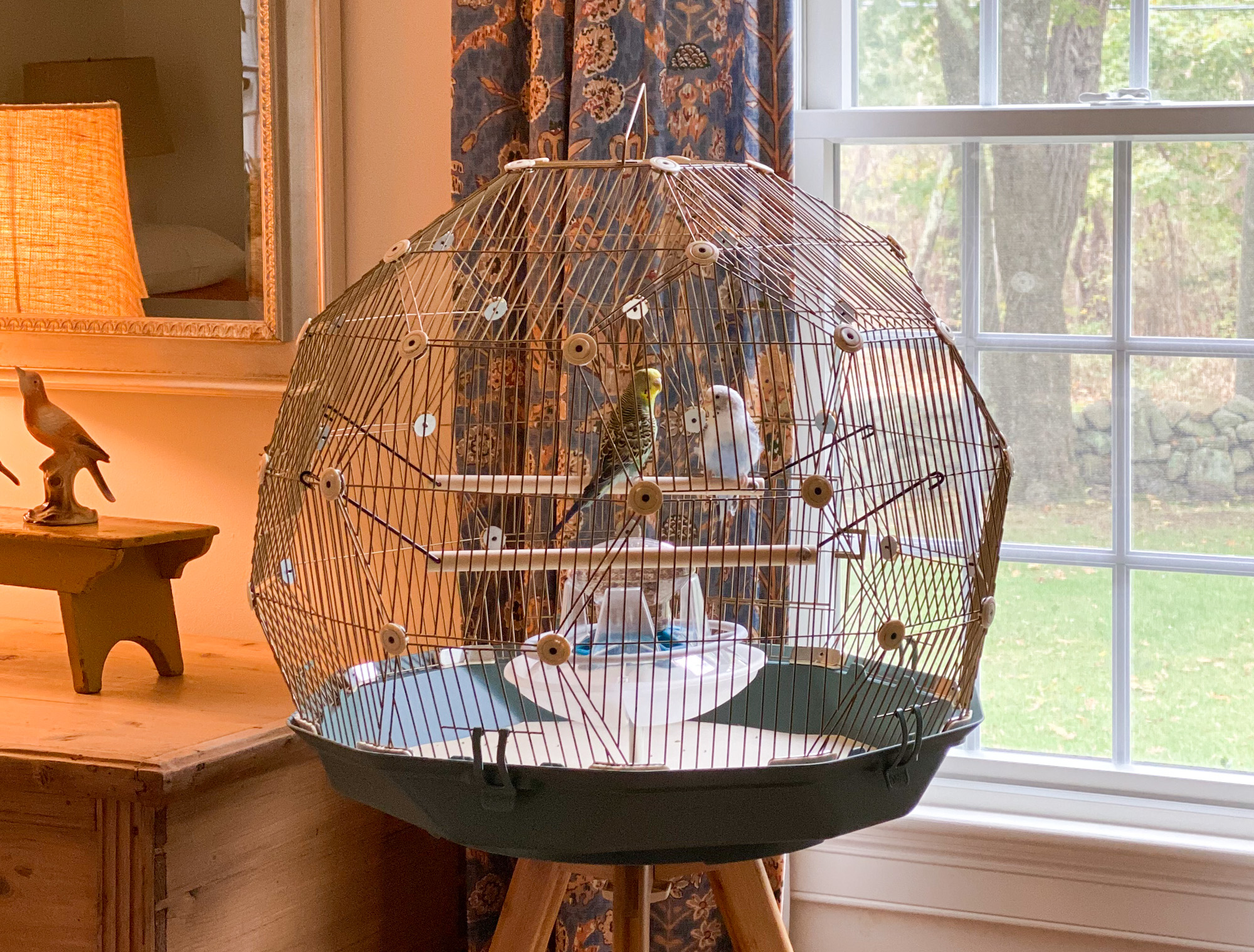 Close up Omlet Geo Bird Cage in use