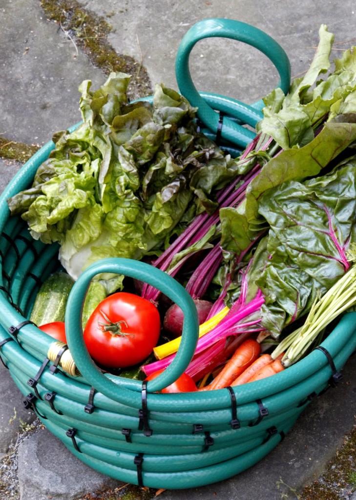 garden hose harvest basket