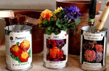 seed packet containers