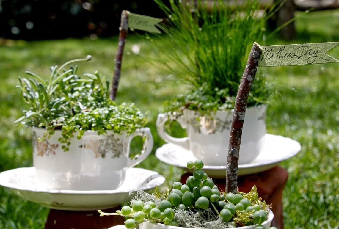 HGTV-MCaughey-teacupgarden-001