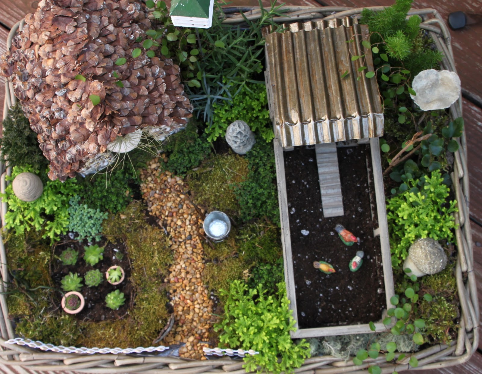 HGTV craft fairy garden