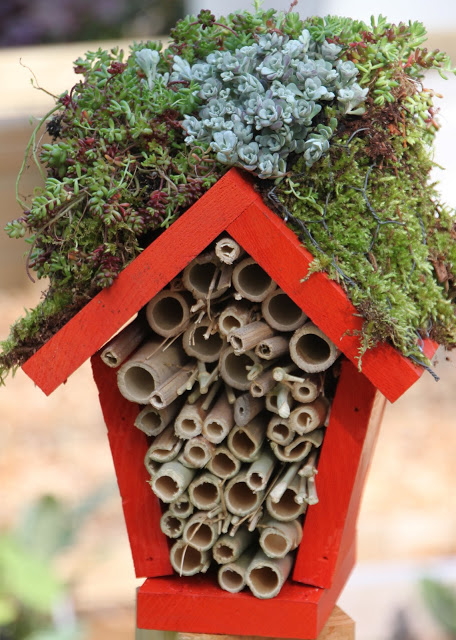HGTV craft lady bug hotel