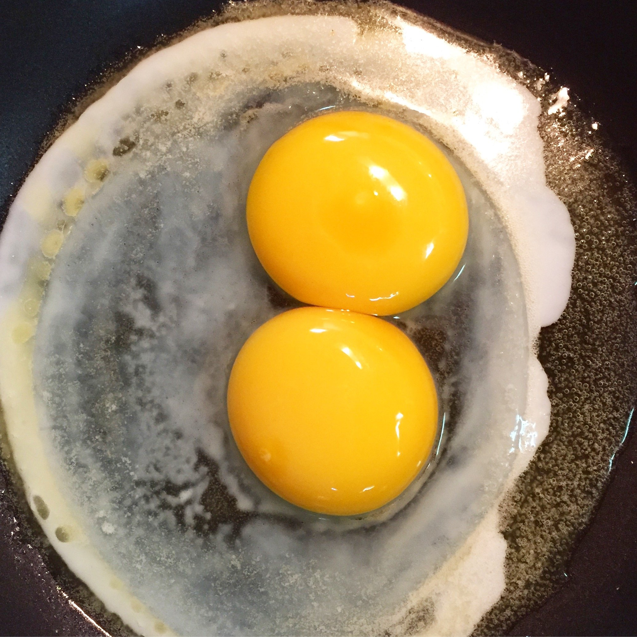 Double Yolk egg from Tillys Nest