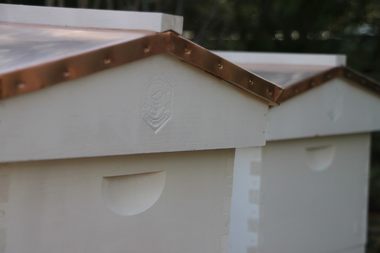 """FOUR 2 1//2/"""" Multiple Adjustments TINY BEE HIVE ENTRANCE 4"""