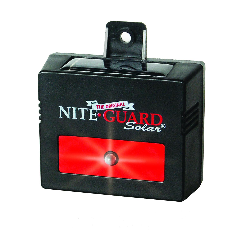nite-guard-solar-product-photo