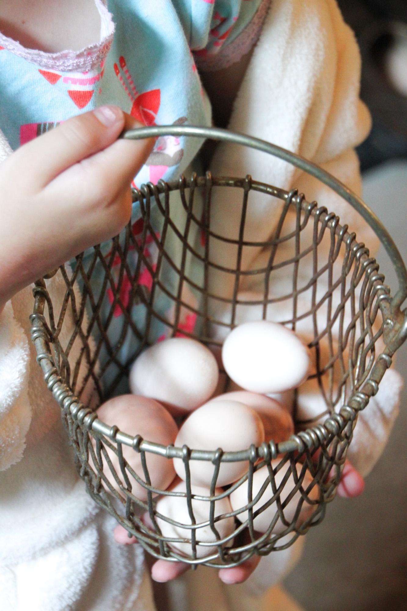 eggs Tilly's Nest