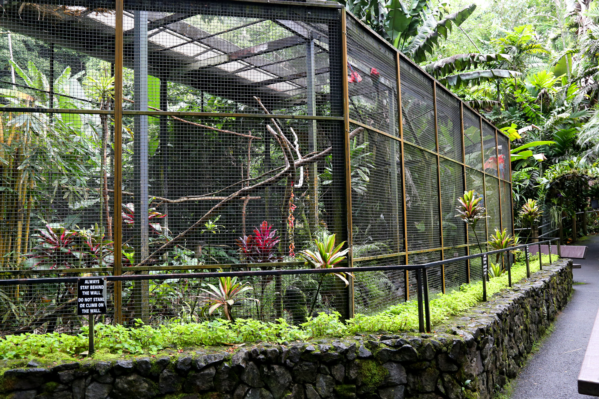 original_caughey-melissa-hawaii-garden-aviary