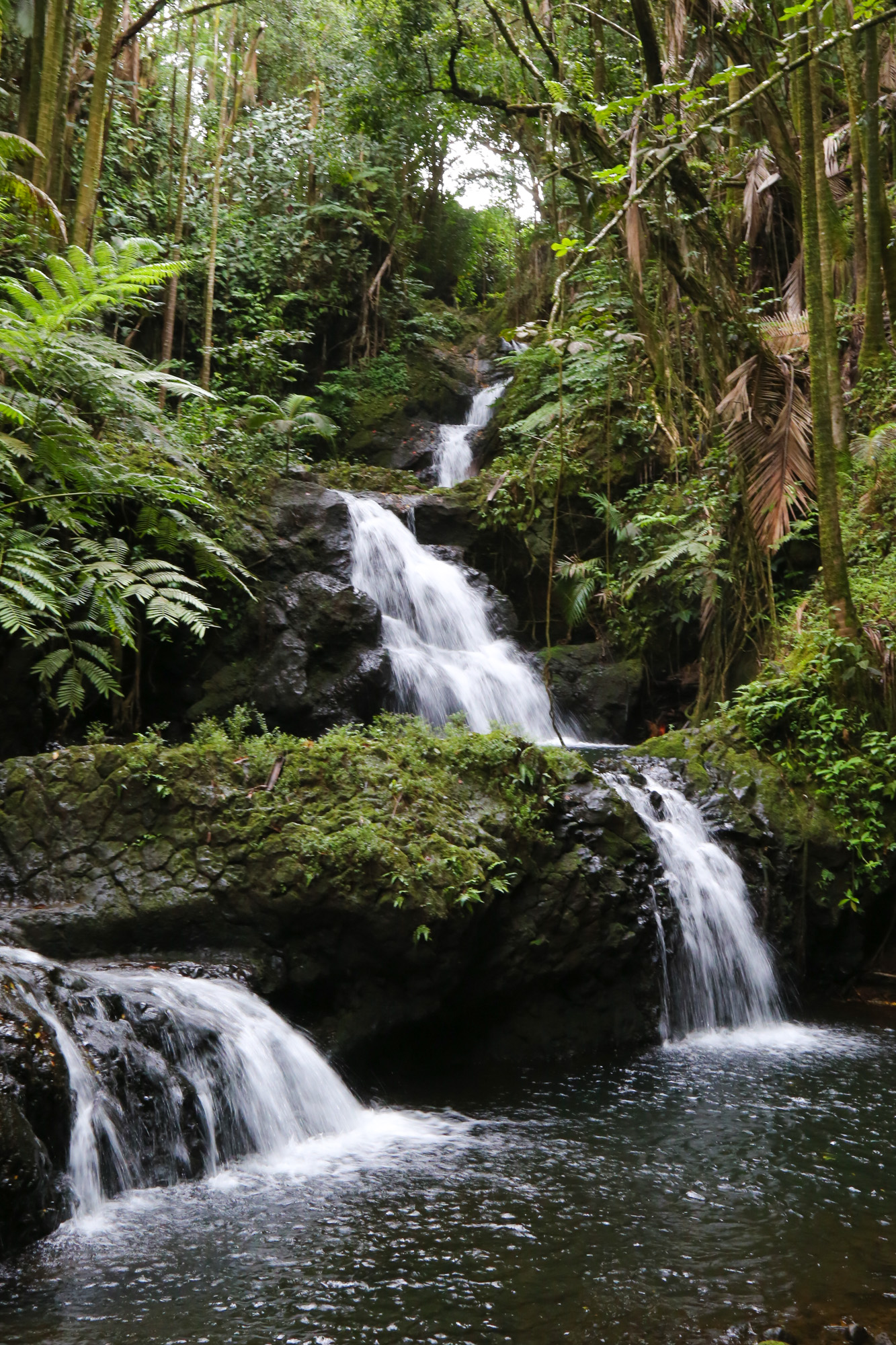 original_caughey-melissa-hawaii-garden-waterfall