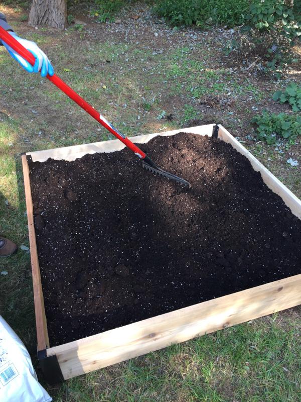 original_caughey-melissa-raised-garden-beds-5
