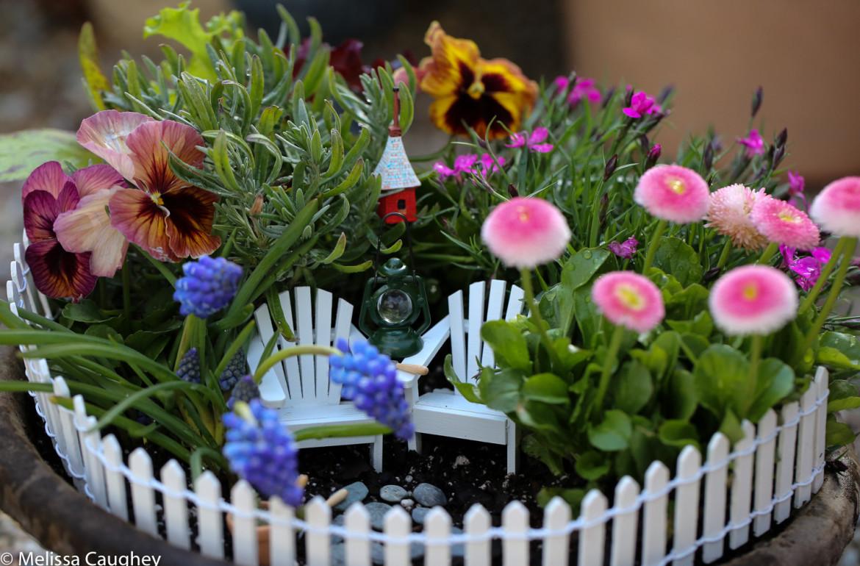 Original_Caughey-Melissa-springtime fairy garden1
