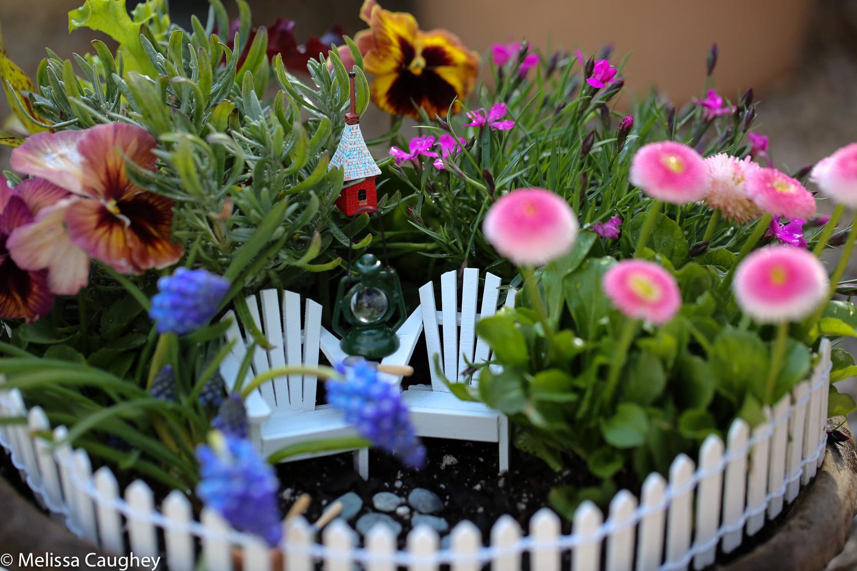 Original_Caughey-Melissa-springtime fairy garden4