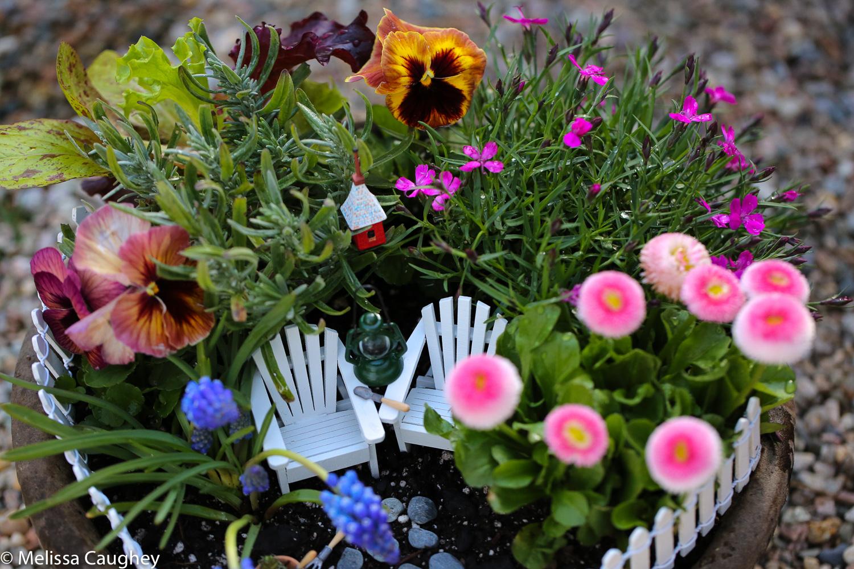 Original_Caughey-Melissa-springtime fairy garden7