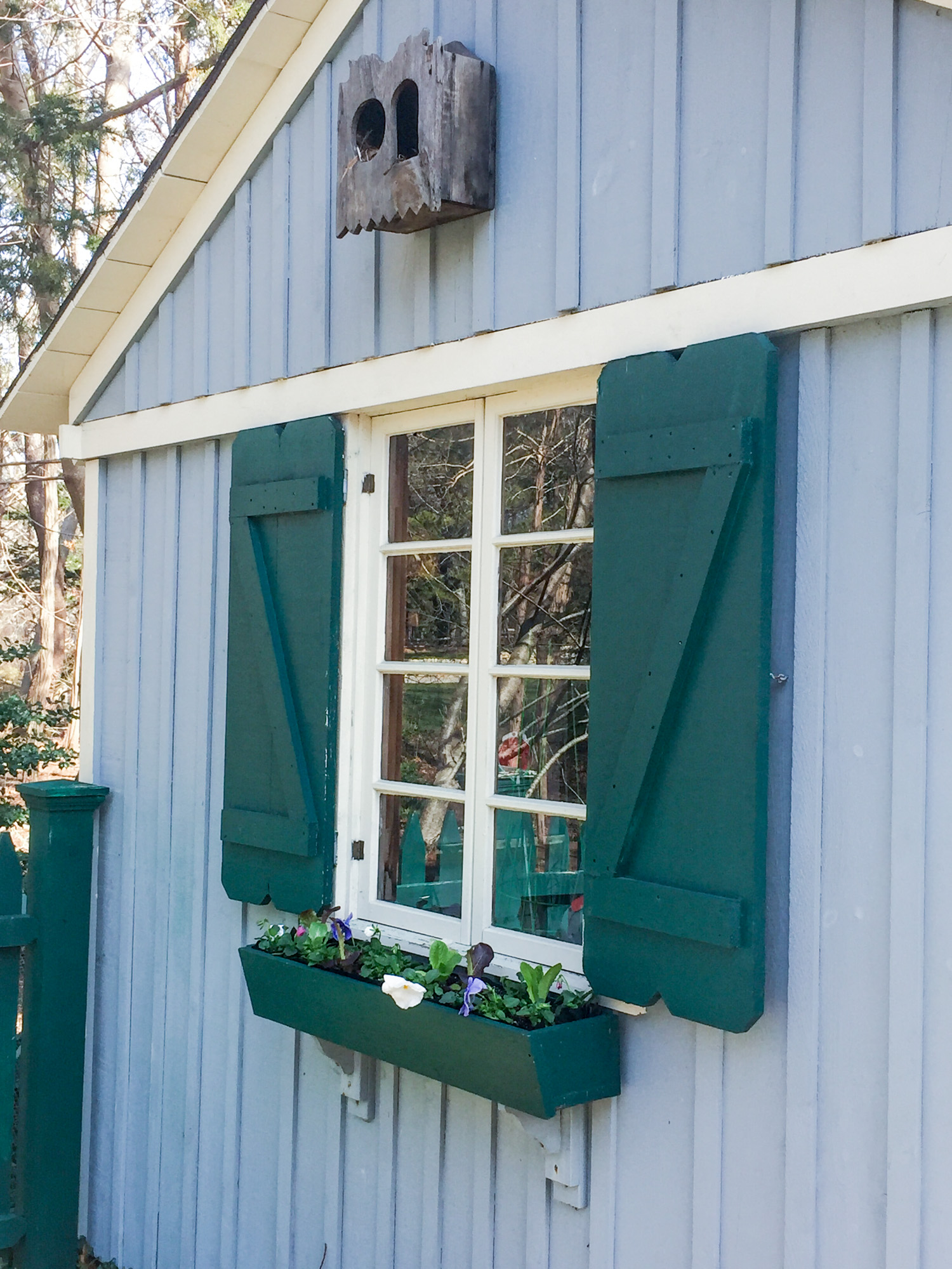 window box garden shed