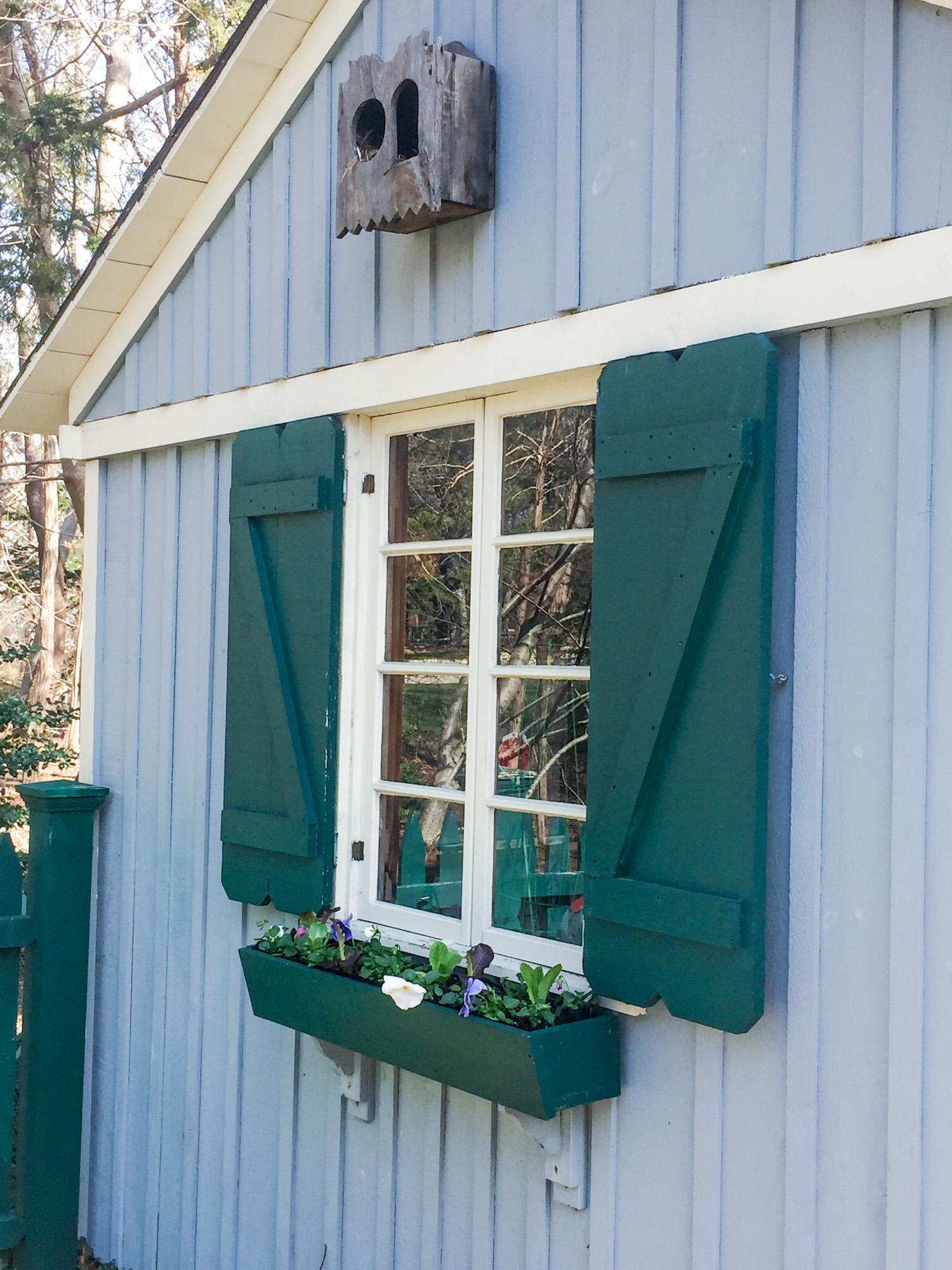 window box garden shed