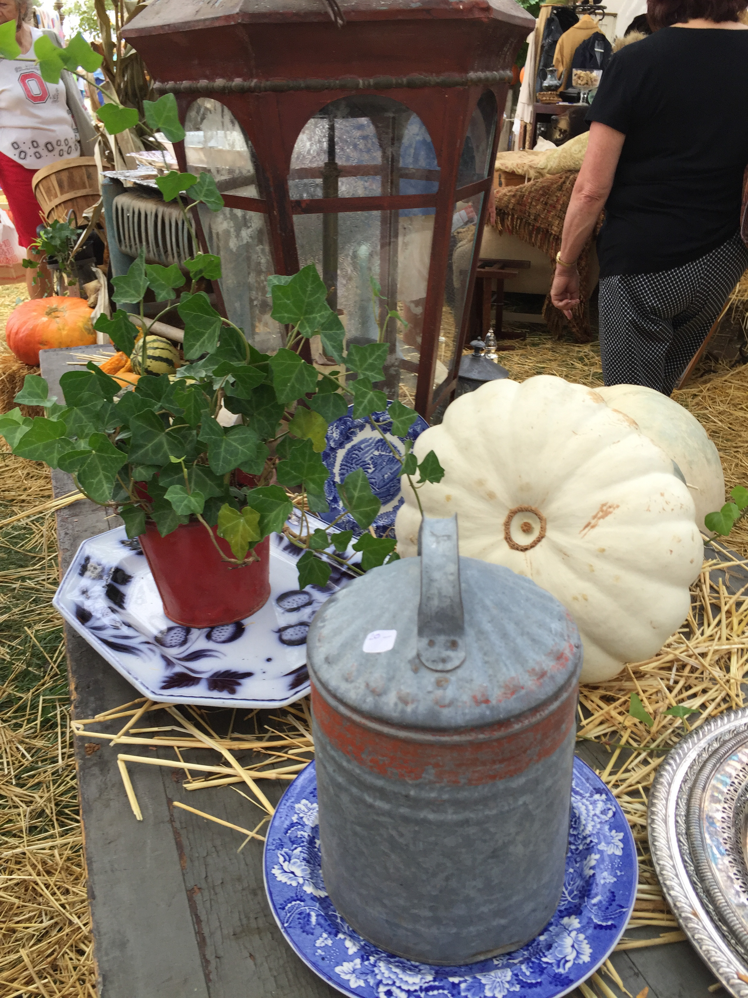 original_caughey-melissacaughey-country-living-fair-ohio-2016-6-8