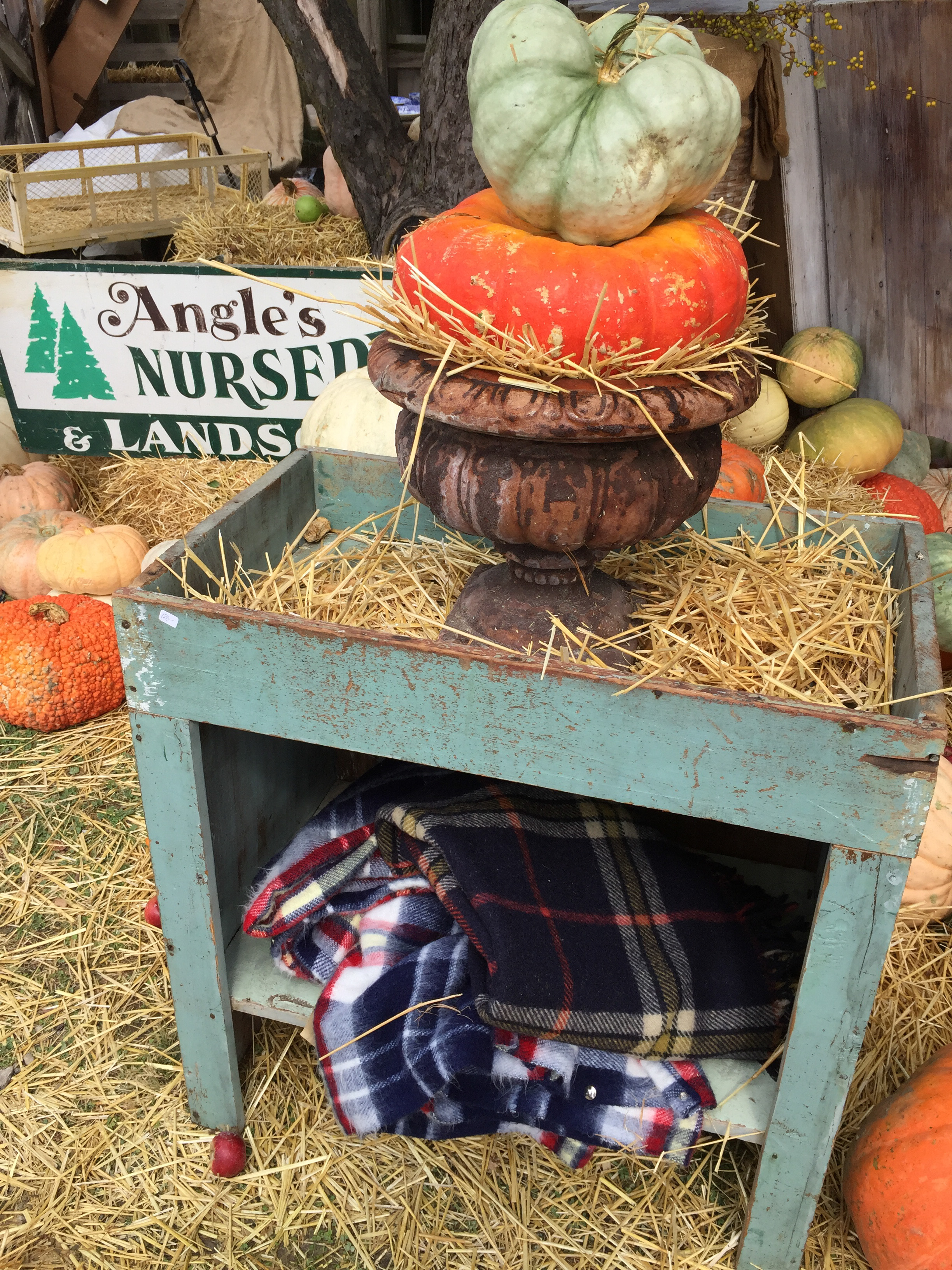 original_caughey-melissacaughey-country-living-fair-ohio-2016-6-9
