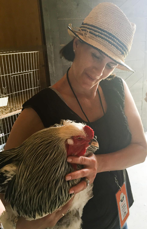 Original_Caughey-MelissaCaughey-P Allen poultryville 5