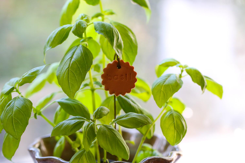 Original_Caughey-MelissaCaughey-gardenmarkers1 clay garden markers