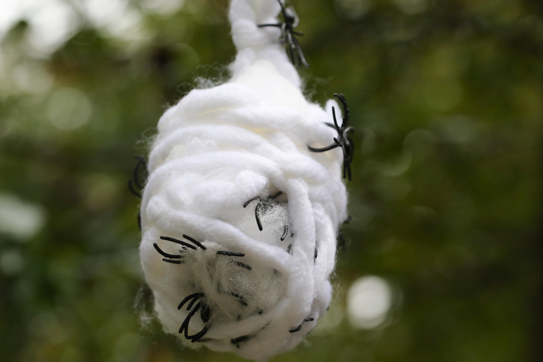 original_caughey-melissacaughey-spider-nest-4
