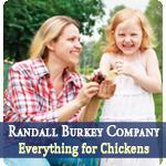 Randall Burkey