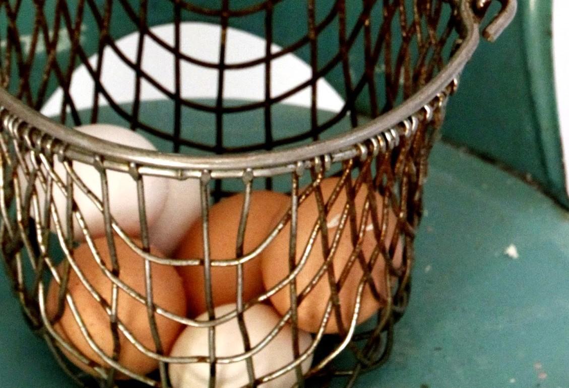 Tillys-Nest-egg-in-basket