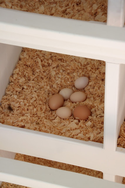 A rotating litter method helps to keep eggs clean.