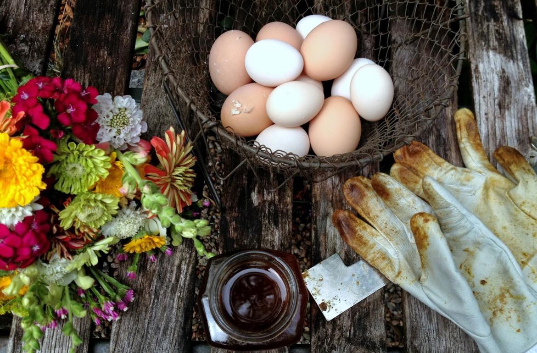 Tillys-Nest-harvest-of-summer-no-words