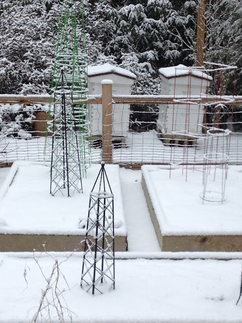 Tilly's Nest -snow covered garden and beehiveswp