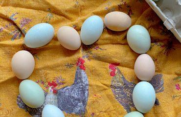 Caughey-Melissa-heart-eggs-on-yellow-towel