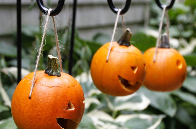 HGTV-MCaughey-pumpkinlanterns-009