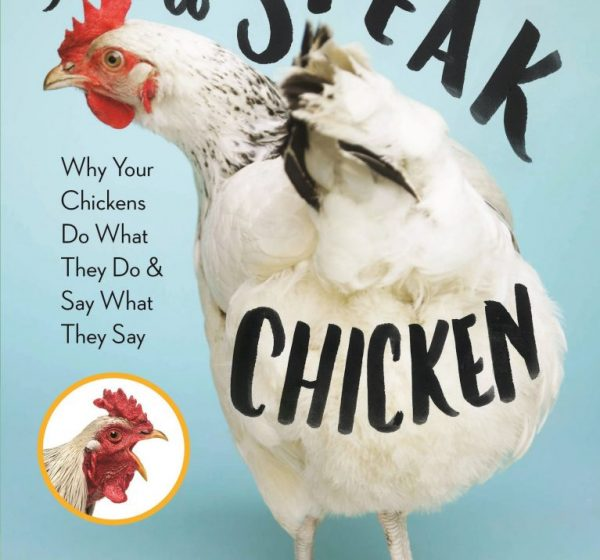 How-to-Speak-Chicken-cover-from-amazon-767x1024