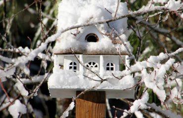Tilly's Nest- birdhouse snowwp