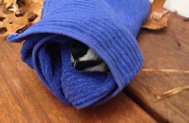 Tillys-Nest-chickadee