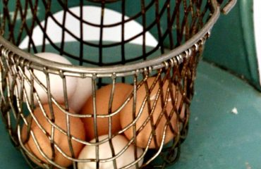 Tillys-Nest-egg-in-basket