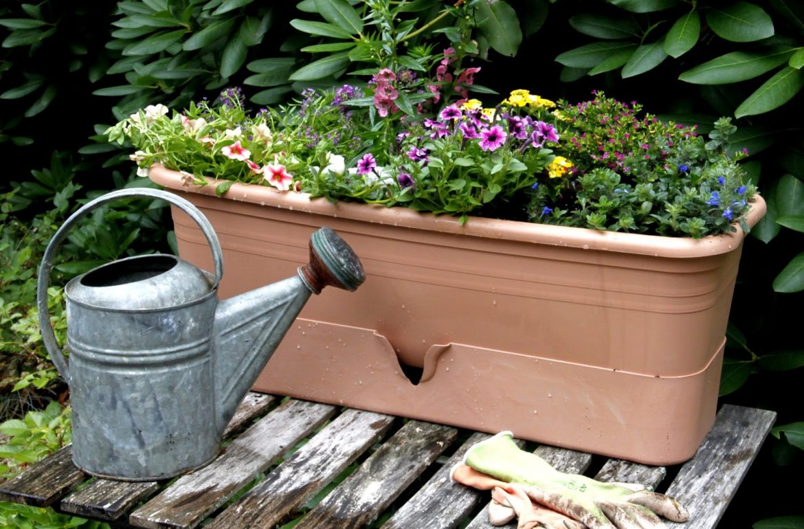 Tillys-Nest-garden-well-planter