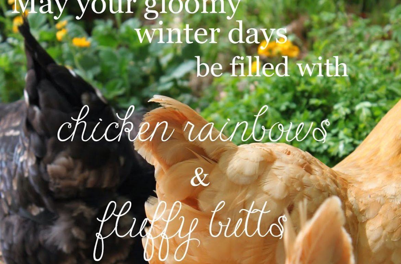 Tillys-Nest-gloomy-winter-day-