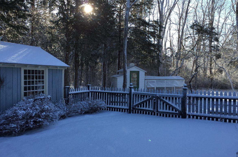 TillysNest-winterscenecoopandshed
