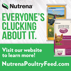 NT_NW_poultry_300x300_WebBanner
