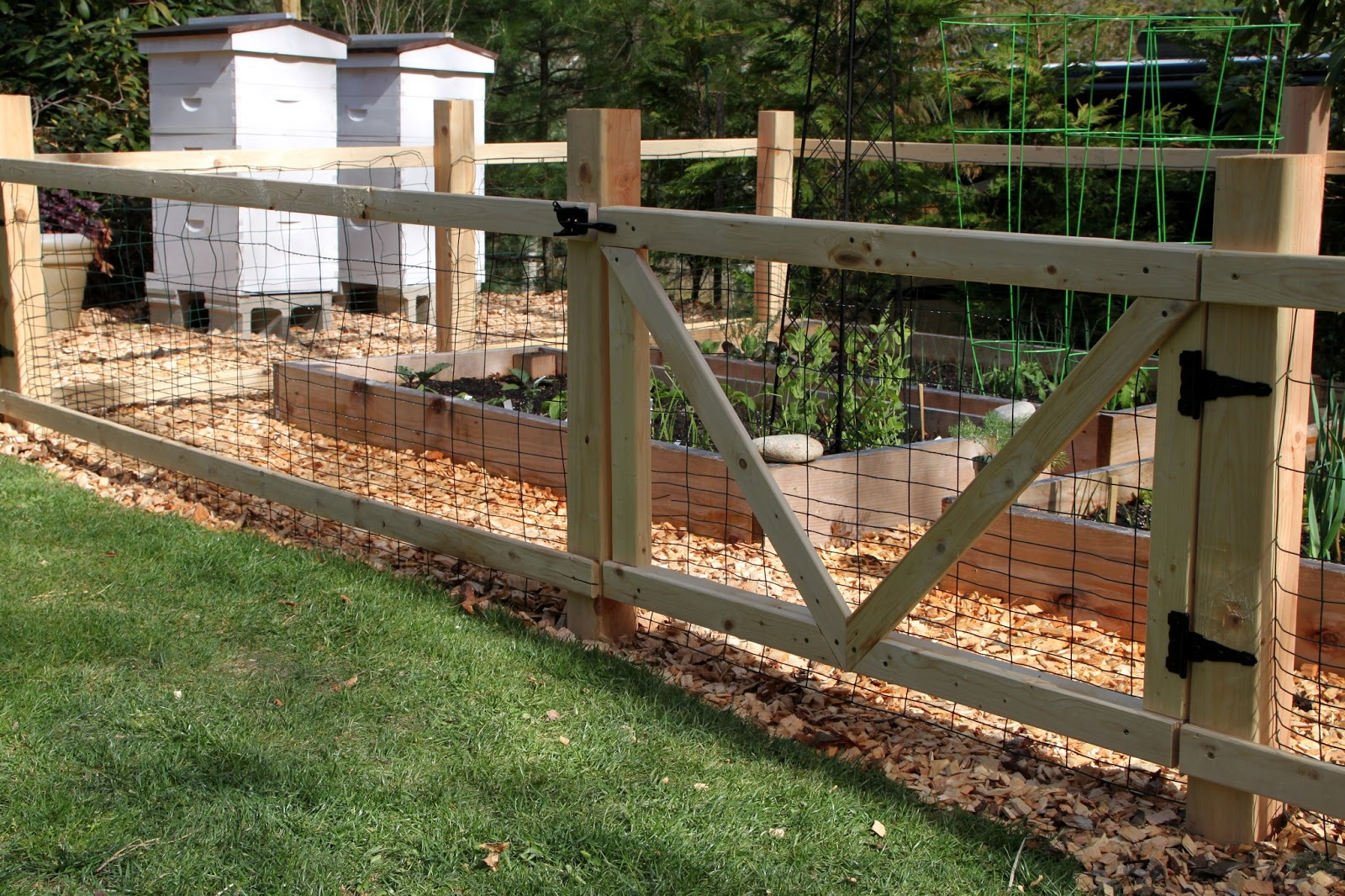 Raised Beds And Fencing The Garden Youtube