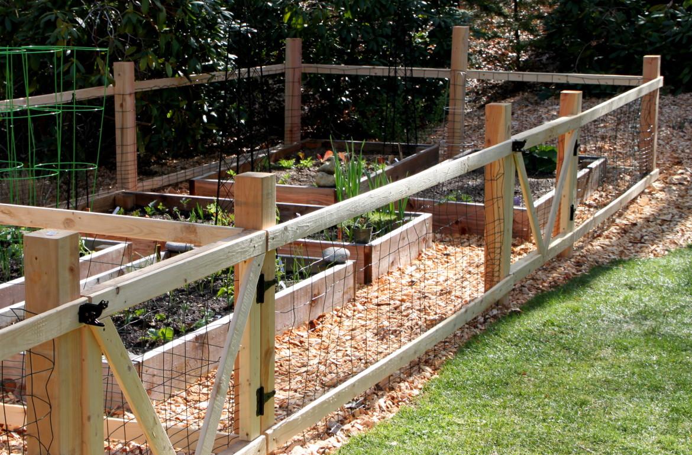 A Simple Garden Fence Tilly S Nest