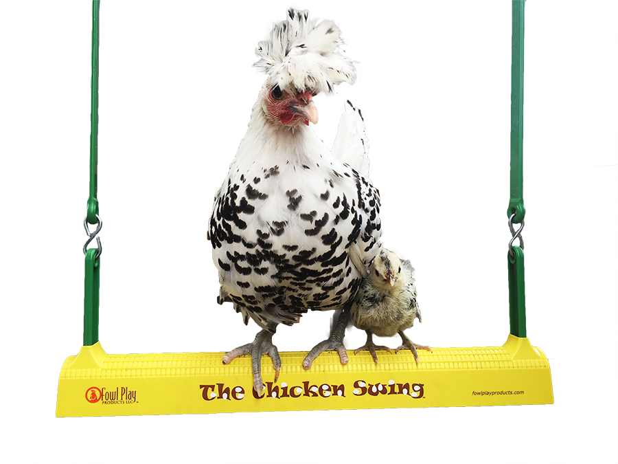 xsmall-2-mother-hen-and-chick-on-swing-2